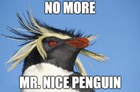 Google Penguin 2013